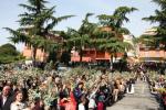 Domenica delle Palme (6).JPG